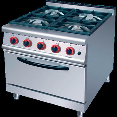 Cocina de fogones con horno de gas for Cocina gas profesional